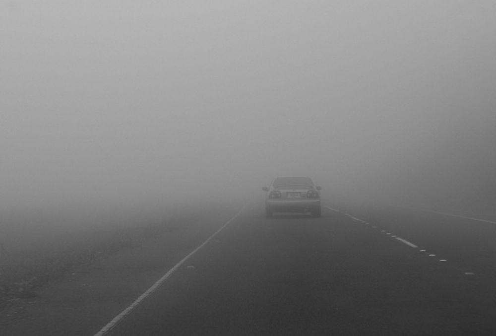 Meteo Parma Per I Prossimi Giorni Fitta Nebbia Al Mattino E Sera