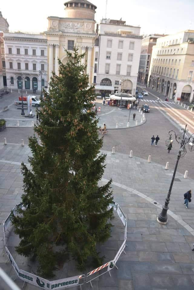 Albero Di Natale 8 Dicembre.8 Dicembre Accensione Dell Albero Di Natale Con Uno Sguardo Alla